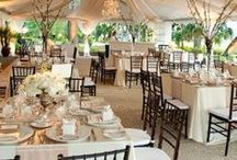 { Brown, Taupe & Neutral } / Color Inspiration for Wedding & Event Decor & Design.