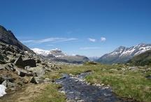 ♥♥♥ Faszination Südtirol ♥♥♥ / AUS GEDANKEN - WIRD WIRKLICHKEIT -  manchmal finden wir wonach wir gesucht haben - für Momente - und erleben uns fernab von allem, was uns festhält - FASZINATION SÜDTIROL (Gruppenboard - bitte nur Bilder über Südtirol pinnen)