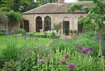 Old Coach House Garden / By garden designer Amanda Patton MSGD. Short-Listed for the Society of Garden Designers Awards 2012 in Planting Design Category. See entire article here: http://www.shootgardening.co.uk/article/old-coach-house-garden. Here are photos of the garden and plants used. / by Shoot Gardening