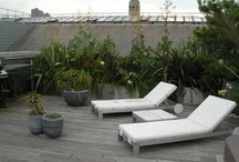 Shoreditch roof garden   / By Garden Designer Sue Amos. An abundance of bold and natural planting softens the hard edges of  this windswept roof terrace.