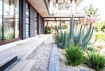 Garden. / by Paola Cors Design