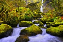 Beauty of Oregon Photography / Special photos capturing the beauty of Oregon