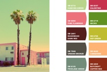 Color Inspiration / by Alysse Sweeney