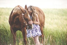 Equine Photography / by Ashton Selig