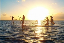 Beach Life / Surf, sand, sun, paddleboarding - life is perfect at the beach! / by Christine Esoldo