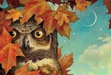 Hooters / Everything Owls / by Christina Covington