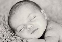 Newborn / by Studio 616 Photography