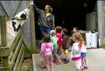 Long Island for Kids / Affordable things to do on Long Island with children: admission fees $8 or less