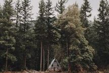 [cabin love] / I want to own a cabin