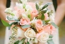To Have & To Hold / Small, simple, DIY wedding / by Elizabeth Jungers