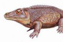 Extinct Critters / Of all species that have existed on Earth, about 99.9 percent are now extinct. Here are a few of the many creatures no longer with us. / by Holly Lindquist