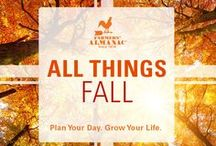 All Things Fall!