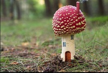 Fairy Gardens / by Mod Vintage Life {Nita Stacy}