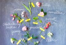 Floral DIY Board And Pins From Tulipina Blog / DIYs and photo shoots from tulipina.com