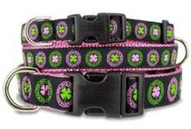 Irish Dog Collars / For the Irish Dog or Owner and lover of all things Celtic & Gaelic!