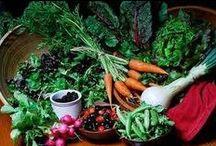 Healthy Diet / by Donna LaFleur