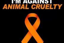 Animal Abuse / Sick and Incomprehensible Acts of Human Cruelty, #StopAnimal Abuse #TakeAction #StopDogFighting #AnimalAbusers #StopBullFighting