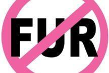 Stupid Fucking Idiots who wearing Fur / #NoFur #PETA #AnimalCruelty #BanFur