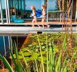 Der kleine feine Schwimmteich / Portrait eines Schwimmteich-Projektes von Salamander-Naturgartengestaltung GmbH
