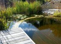 Holzterrassen / Wooden deck / Holzdeck-Oberflächen mit Angabe zum Material
