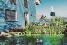 Sommer im Garten / Summer garden / Ideen und Momentaufnahmen von Gartenerlebnissen im Sommer