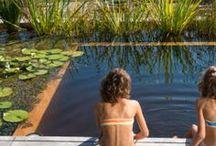 Badezeit am Schwimmteich / Bath swimming pond / Momentaufnahmen zur Nutzung des Schwimmteiches und Naturpools im Sommer