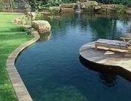 Schwimmteich - Natürliche Formen / Wasserbecken in ihrer Gestalt, von der Natur geformt oder vom Menschen in eine Form gebracht