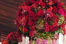 Floral designers Paradise / Flower arrangements