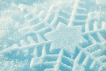 Ice and Snow / Anything Winter and Polar. / by Judy Fazio