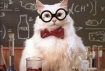 I ♥ Science