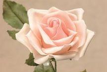 Gumpaste Flowers - FLORES DE PASTA DE GOMA / Preciosas flores modeladas en pasta de goma.