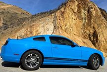 mustang love / by Crystal Robison