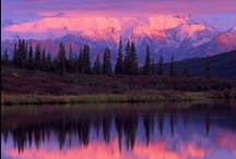 Alaska / by Brandi Bartlett