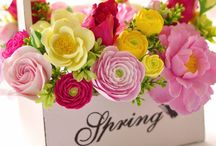 Spring has sprung / Fresh, vibrant and fun. Spring is here!