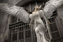 ƜƗƝǤ / My spirit animal is a bird, with far reaching wings.