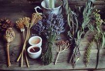 apothecary / Herbal remedies & natural healing..