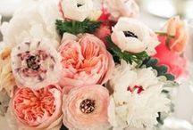 Flowery | Arrangements | Boquets / by Jessica Jackson