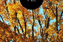 Autumn / by Jessica Jackson
