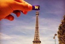 Purple&Gold / by Cheney Ferrell