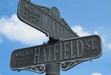 Hatfields and Mccoys / by Wild Garlic