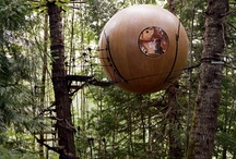 Architecture / I love alternative ways to see things! I'll probably never be living in a tree house or in a hobbit house, but I like watching these pictures and dream...