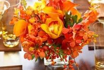 flowers / by Natalie Woods