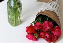 Fleurs / by Amelia Champion