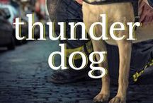 BOOK: Thunder Dog / The true story of a blind man, his guide dog, and the triumph of trust at Ground Zero. A New York Times bestseller, Thunder Dog released in 2011 from Thomas Nelson (now Harper Collins).