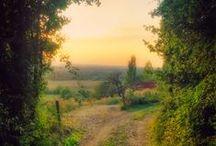 Beautiful Photos II / by Ramza Hitti-Pogachar