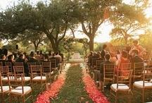 Weddingness / by L. Burr