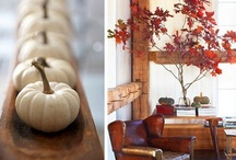 Crisp Fall Colours for Your Kitchen / by Rethink The Sink