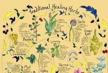 Natural Remedies / For common illnesses, mental health and general well-being
