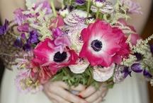 Wedding Stuff / by Harpur Thomas