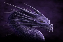 I Love Dragons / Pictures of my favourite mystical creature